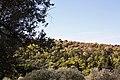 Athens 09 2013 - panoramio (11).jpg