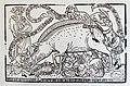 Ausstellung Synagoge Wittlich. Das große Judenschwein war eine verhöhnende Abbildung im 15. Jahrhundert.jpg