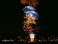Australia Day Fireworks 03.jpg