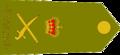 Australian-Army-LT GEN-infobox.png