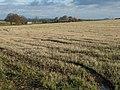 Autumn field near Fordel Mains - geograph.org.uk - 1565329.jpg