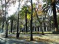 Avenida da Liberdade em Dezembro de 2013 (11570918506).jpg