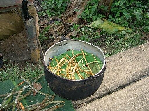 olla o cacerola grande con ayahuasca y chacruna