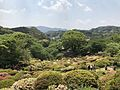 Azalea Valley in Mifuneyama Garden 6.jpg