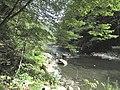 Banat,Nera Canyon - panoramio (34).jpg