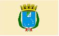 Bandeira São Luís.PNG