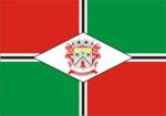 Bandeira papanduva.png