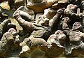 Banteay Samre, Cambodia (2211433263).jpg