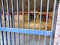 Barbican Estate - a car park.jpg
