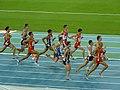 Barcelona 2010 - 1500m final3.jpg