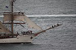 Bark europa 2792 (10521425803) (2).jpg