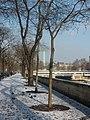 Bastille sous la neige 2.JPG