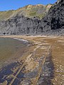 Beach and cliffs at Chapman's Pool - geograph.org.uk - 900421.jpg
