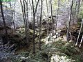 Bear-rocks-trail ForestWander.JPG