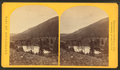 Beaver Lake, Conejos Cañon, 9,000 feet above sea-level, and 80 miles from mouth of cañon, by O'Sullivan, Timothy H., 1840-1882 2.png