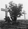 Begraafplaats Margraten, Bestanddeelnr 900-9970.jpg