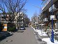 Beispiel Quartiersstraße Vauban.jpg