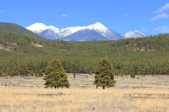 San Francisco Peaks - The San Francisco Peaks as seen from Bellemont, Arizona, Winter 2014.