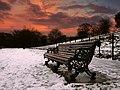 Bench at dusk, Greenwich Park, London 4210302102.jpg