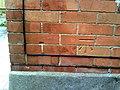 Benchmark on side of ^83 Bridport Road - geograph.org.uk - 2226006.jpg