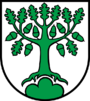 Coat of Arms of Bergdietikon