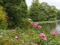 Bergpark Kassel-Wilhelmshöhe 18.jpg