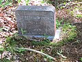 Bernard Wesley, Headstone, Marks Cemetery, Orland, Maine.jpg