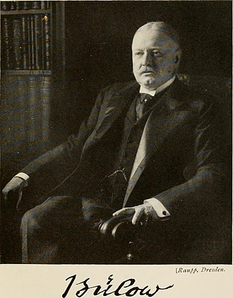 Anglo-German naval arms race - Bernhard von Bülow, German Chancellor from 1900 to 1909, initially supported Tirpitz's plan but grew increasingly skeptical of the strain upon German finances