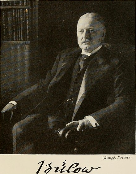 Bernhard von Bülow, German Chancellor from 1900 to 1909, initially supported Tirpitz's plan but grew increasingly skeptical of the strain upon German finances
