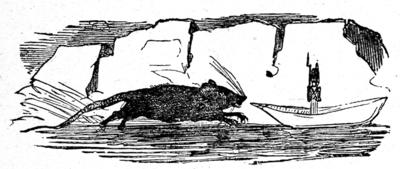 Vignette de Bertall