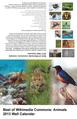 Best of Commons Animals 2013 printable.pdf