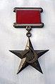Big medal, Nevsky Prospect, Leningrad (31675015040).jpg