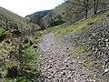 Biggin Dale - geograph.org.uk - 1231014.jpg