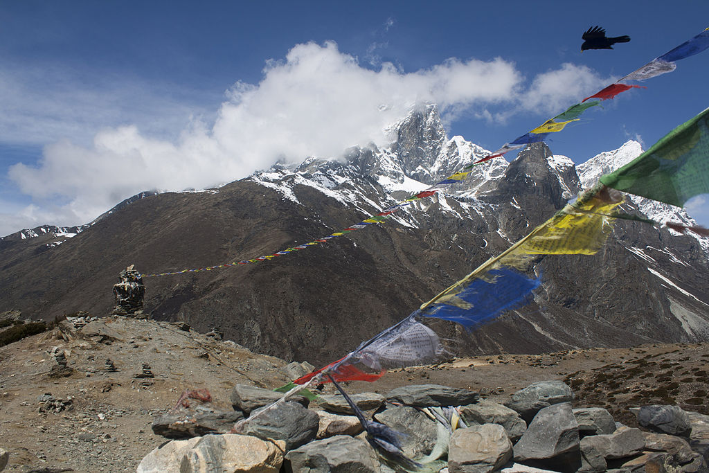 Bird and Prayer Flags in Front of Mt Ama Dablam, Sagarmatha National Park, Nepal
