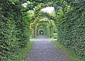 Birr Castle gardens - geograph.org.uk - 1362106.jpg