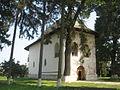 Biserica Adormirea Maicii Domnului din Baia11.jpg