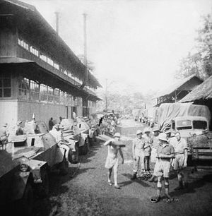 2/3rd Machine Gun Battalion (Australia) - 2/3rd Machine Gun Battalion personnel at Arinem Plantation, Java