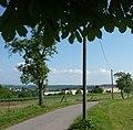 Blick vom Freudenbergerhof - panoramio (1).jpg