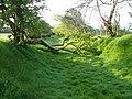 Blocked track on Aish Ridge - geograph.org.uk - 169813.jpg