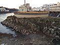 Blue Heron paper mill by Sam Beebe 06.jpg