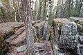 Bonsai Boulders Kananaskis Alberta Canada (16236725044).jpg