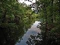 Borsko jezero, Brestovac - panoramio (3).jpg