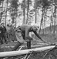 Bosbewerking, arbeiders, boomstammen, bomen vellen, Bestanddeelnr 251-9306.jpg