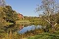Botanischer Garten Berlin-Dahlem 10-2014 photo01 pond.jpg