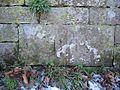 Boundary Stone near Bolesworth - geograph.org.uk - 333456.jpg