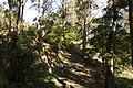 Bowral NSW 2576, Australia - panoramio (112).jpg