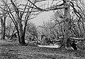 Brady, Mathew B. - Überreste eines Gleises beim Eichensumpf (Zeno Fotografie).jpg