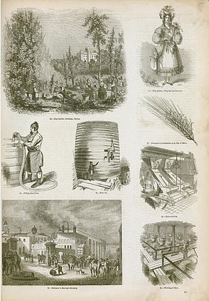 Distilled beverage - An illustration of brewing and distilling industry methods in England, 1858