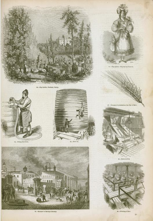 Brewing and distillation industries. ( 1858- )