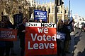 Brexit Demonstrator Banners.jpg